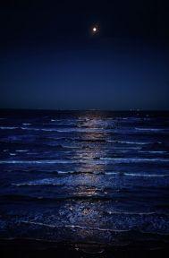 ocean blog post
